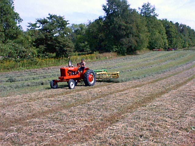 CCF Hay Raking (Summer 2002)